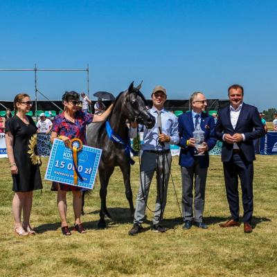4TH ALL-POLISH ARABIAN HORSE CHAMPIONSHIP 2019 - RESULTS